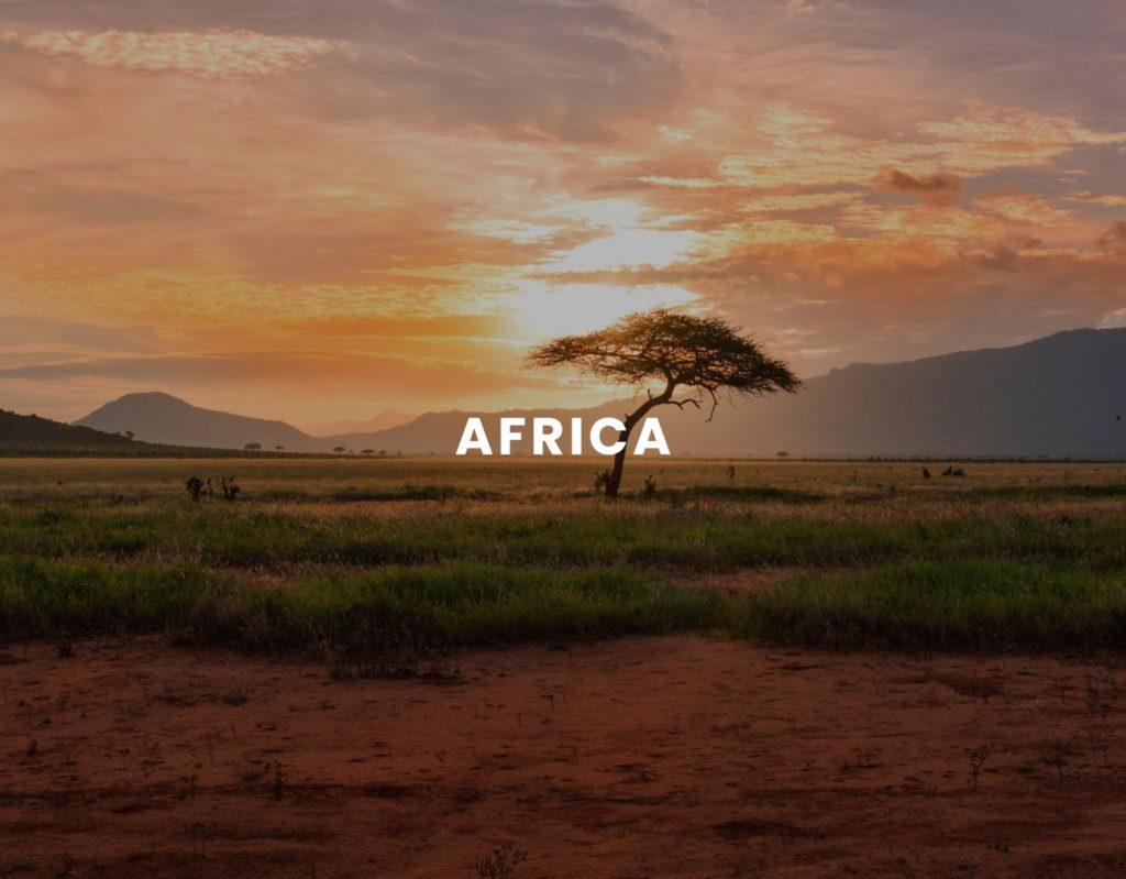 Benin/CAR 4111-01